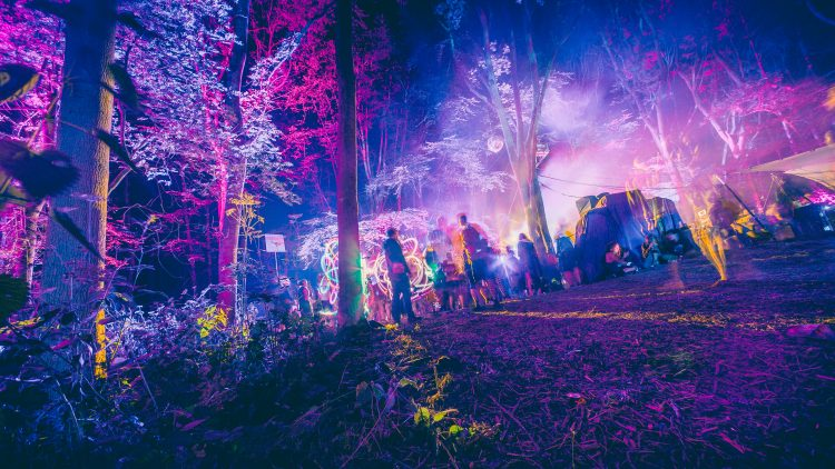 festival goers standing amongst the trees at night during Noisily Festival 2018