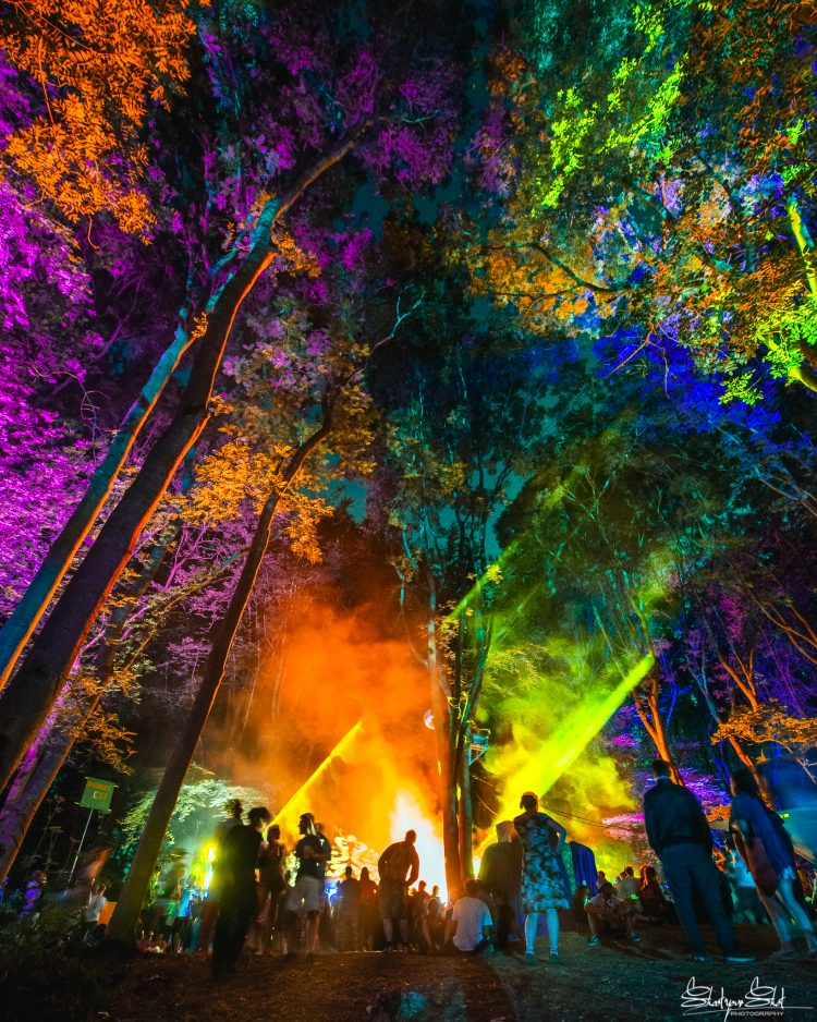 rainbow lights shining on coney woods during Noisily Festival 2018