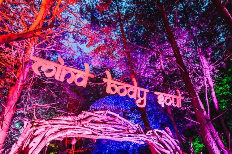mind body soul sign hanging in trees at night