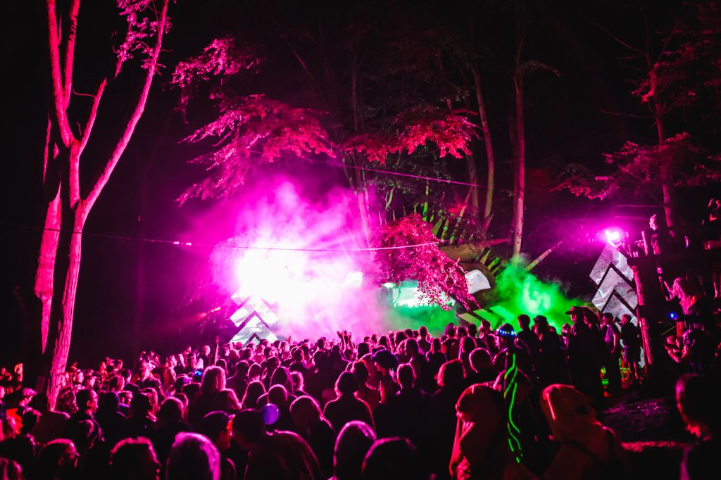 bright purple light shining in front a Noisily Festival 2019 crowd