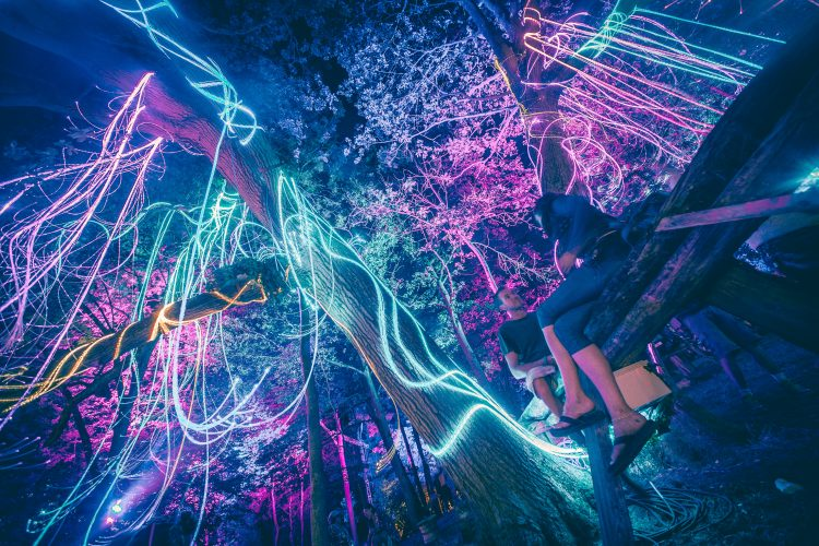 girl sitting in a tree covered with neon lights during Noisily Festival 2018
