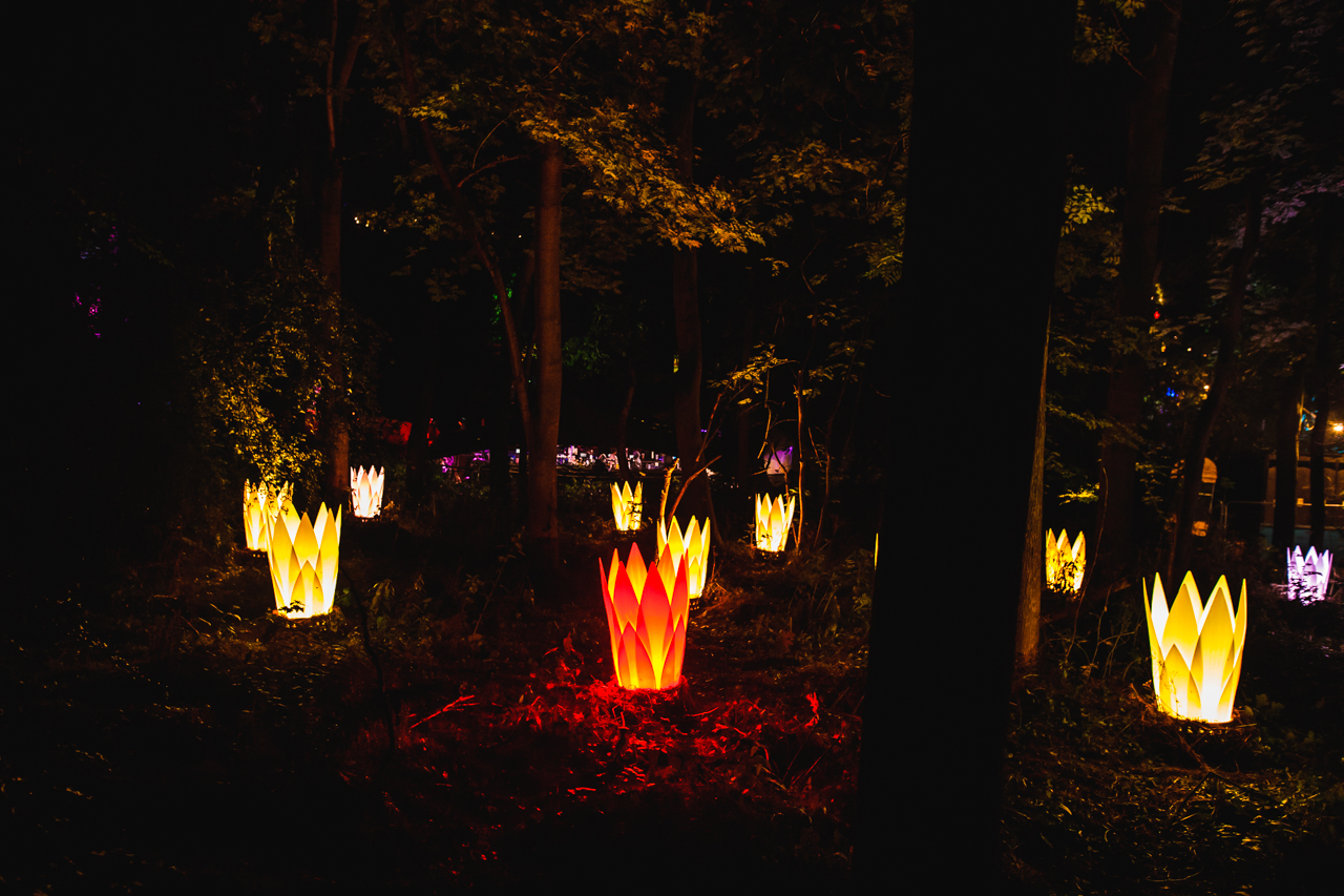 Art installation of giant lotus followers in the woods at Noisily Festival at night time