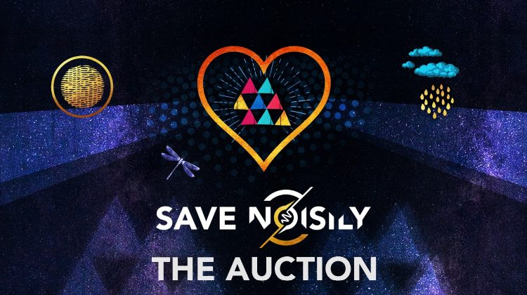 Art auction to save noisily